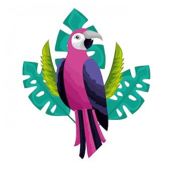 Exotischer papageienvogel verlässt tropisch
