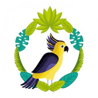 Exotischer vogel des kakadus verlässt tropisch