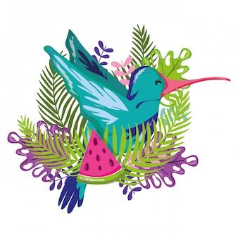 Exotischer vogel und sommer