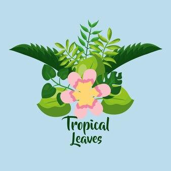 Exotisches plakat der tropischen blattlaub-palmenanlage