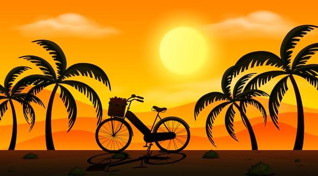 Fahrrad- und baumschattenbilder bei sonnenuntergang