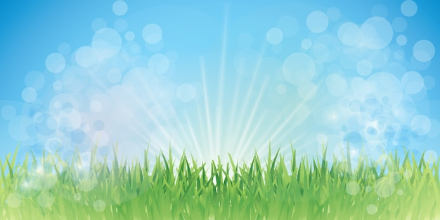 Fairy gras hintergrund