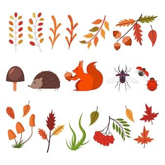 Fallen dekorative elemente. herbstlaub, gras, pilze, tiere und käfer.