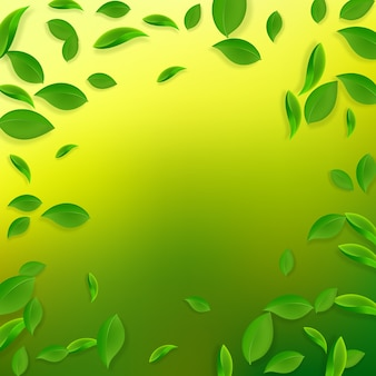Fallende grüne blätter. frische teeblätter fliegen.