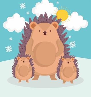 Familien-igel im winter