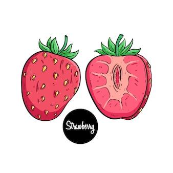Farbige hand gezeichnete erdbeerfrucht mit text auf weißem hintergrund