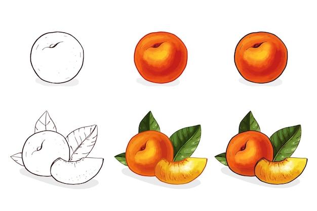 Farbige hand gezeichnete pfirsichillustration. ganzer pfirsich mit scheiben und blättern