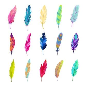 Farbige vogelfedern gesetzt. helles federdesign mit weichem kontrast