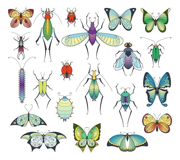 Farbiges insektenisolat auf weiß. bugs und schmetterlinge vektorbilder eingestellt.