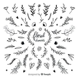 Farblose florale dekorative elementpackung