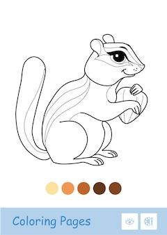 Farbloses konturbild eines streifenhörnchens, das eine nuss isoliert auf weiß hält wildtiere vorschulkinder malbuch illustrationen und entwicklungsaktivität