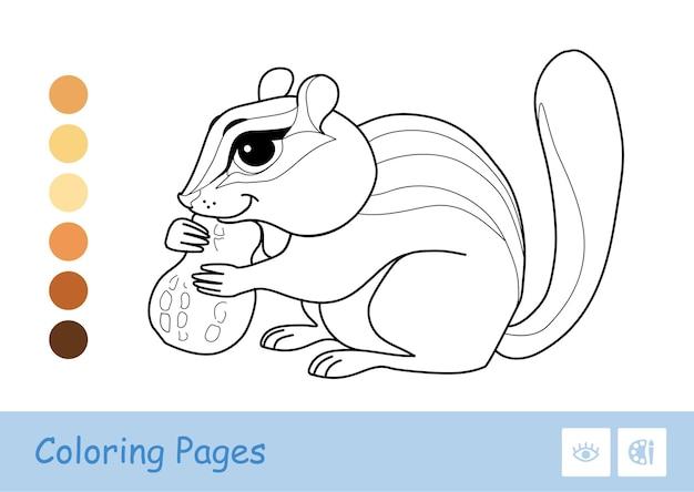 Farbloses konturbild eines streifenhörnchens, das eine nuss nagt, isoliert auf weiß wildtiere im vorschulalter, malbuchillustrationen und entwicklungsaktivität
