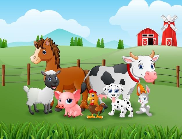 Farm der tiere in den hügeln