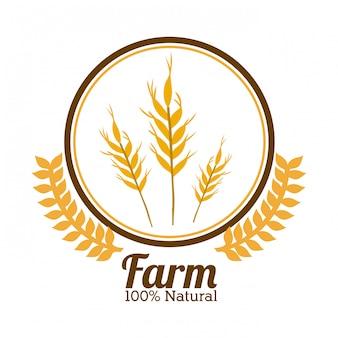 Farm design