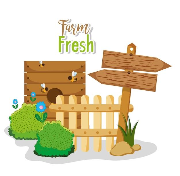 Farm frische produkte