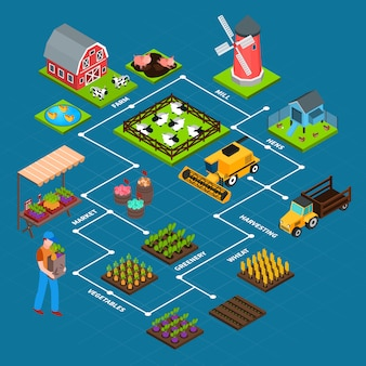 Farm isometric flowchart
