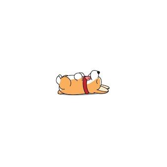 Fauler waliser corgi welpe, der auf hinterer ikone liegt