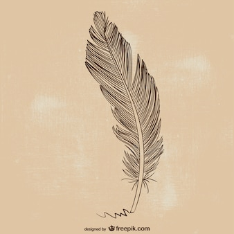 Feather stift illustration