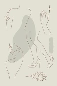 Feminine linie kunstsammlungsvektor