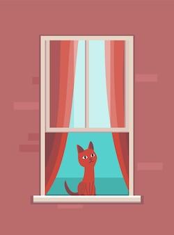 Fenster mit haustier. wohnhaus mit katze in offenen fensterräumen. außenwand des hauses mit sitzkatze.