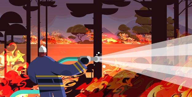 Feuerwehrmannholdingschlauch, der gefährliches verheerendes feuer in den brennenden bäumen des brennenden trockenen waldes des kämpfenden buschfeuers des naturkatastrophenkonzeptes des australiens intensiven orange flammen horizontal löscht