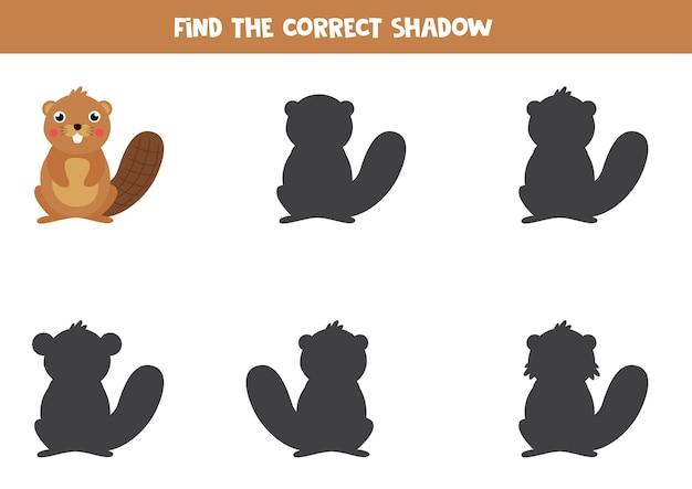 Finde den richtigen schatten eines niedlichen cartoon-bibers. pädagogisches logisches spiel für kinder.