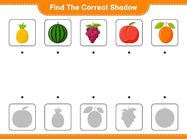 Finde den richtigen schatten. finde und passe den richtigen schatten der früchte an. pädagogisches kinderspiel, druckbares arbeitsblatt