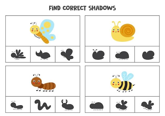 Finde die richtigen schatten niedlicher insekten