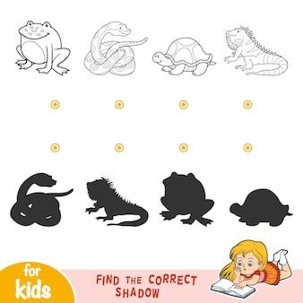 Finden sie das richtige schatten-bildungsspiel für kinder. schwarze und weiße tiere