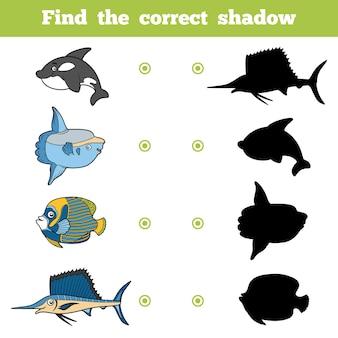 Finden sie das richtige schatten-bildungsspiel für kinder. vektor-set von meerestieren