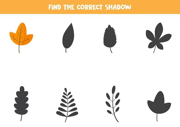 Finden sie den richtigen schatten des süßen herbstblattes. logisches puzzle für kinder.