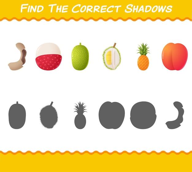 Finden sie die richtigen schatten von comic-früchten. such- und matching-spiel.