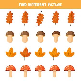 Finden sie verschiedene pilze und blätter in jeder reihe,