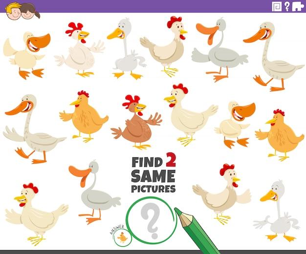 Finden sie zwei gleiche farmvögel lernspiel für kinder