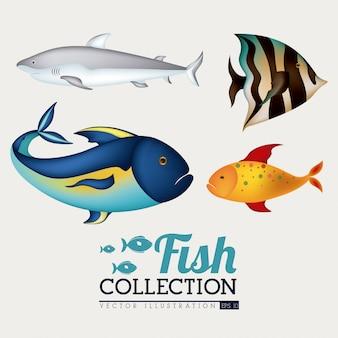 Fisch-design