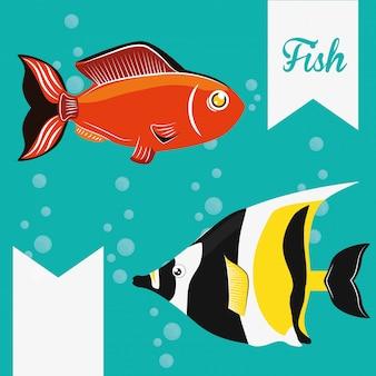Fisch figur design