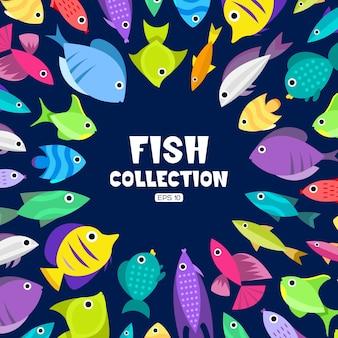 Fisch sammlung hintergrund