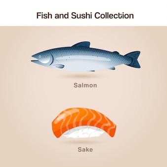 Fisch- und sushi-set