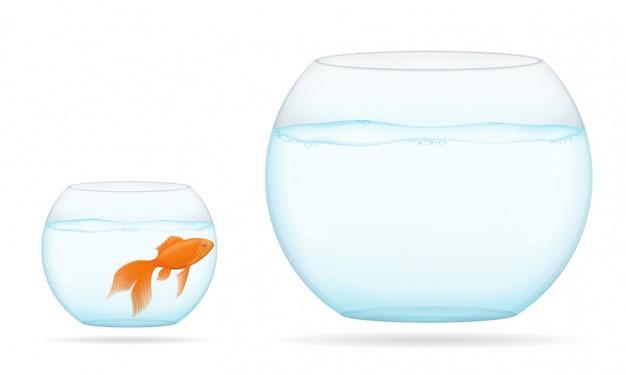 Fischen sie in einer transparenten aquariumvektorillustration