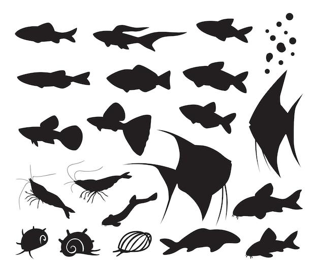 Fischschneckengarnele silhouette illustration im naturaquarium
