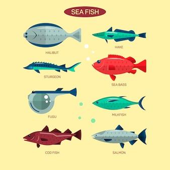Fischvektor eingestellt in flaches artdesign. ozean-, see- und flussfischsammlung. lachs, fugu, wolfsbarsch, stör.