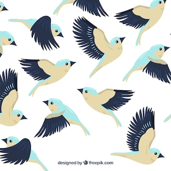 Flach fliegender vogel hintergrund