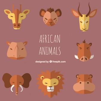 Flache afrikanische tier avatare