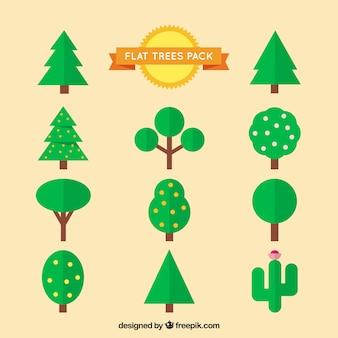 Flache bäume packen