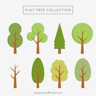 Flache bäume sammlung