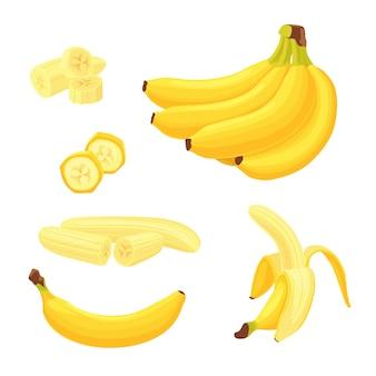Flache illustrationen der bunten bananenfrüchte