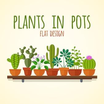 Flache kakteen und hauptplantakonzept. pflanzen sie kaktus im topf, naturinnenblumenillustration