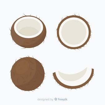 Flache kokosnuss-sammlung