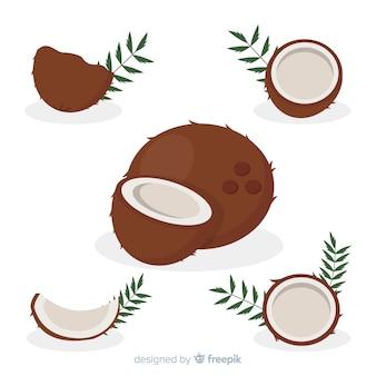 Flache kokosnussillustration