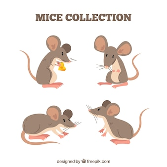 Flache mäusesammlung mit verschiedenen haltungen